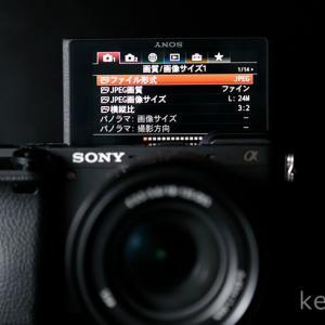 【ソニー α6400 レビュー】AFが高性能・タッチパネル搭載のミラーレスカメラ