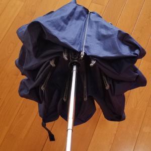 クニルプス傘、見た目の違い。