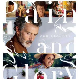 スペイン映画『ペイン・アンド・グローリー』を鑑賞しました。