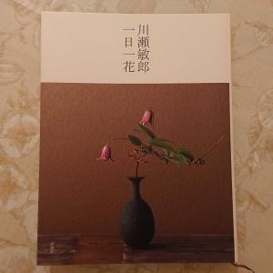花人・川瀬敏郎さんの『川瀬敏郎  一日一花』