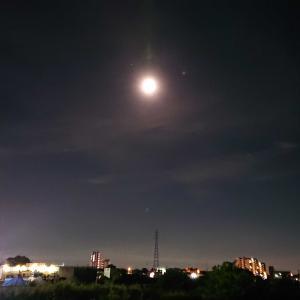 夜のお散歩と夜の風景のオンパレード。