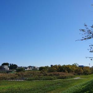 秋晴れのさわやかな日曜日♪