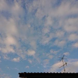 爽やかな朝を迎える。(^^)