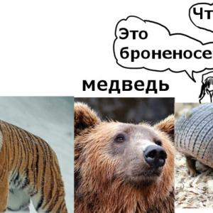 ロシア語の指示代名詞と存在を表す表現
