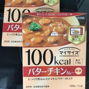 100kcalカレー食べてみた&お酢の力で健康ダイエット82日目 #158