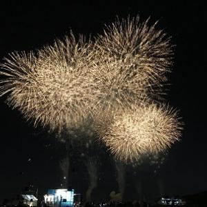 夏は花火が観たい!!!&お酢の力で健康ダイエット83日目#160