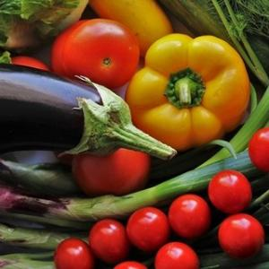 【持続可能な生活】栄養面4つのチェックポイント、ベジタリアンや公正取引商品について考える