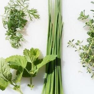 エコで簡単な【家庭菜園】の健康レシピ!エコをかなえる3つのポイントを添えて