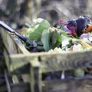 【環境保護】ゴミ問題を言葉とともに考えるエコな「なにぬねの」