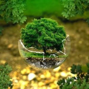 【環境保護】ゴミ問題を言葉とともに考えるエコな「あいうえお」