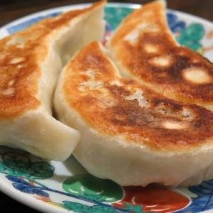 ドイツの豆腐で【ベジタリアン】餃子を皮から作る
