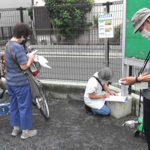 〔287〕周知の事実ですが、清瀬(東京)の放射線量は郡山(福島)より高いところがあります。