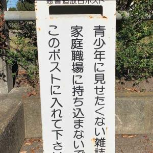 藤枝市駅西公園の白ポスト