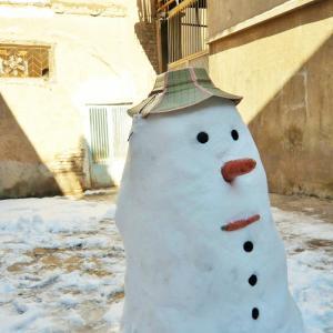 【イラン】大雪のカシャーン