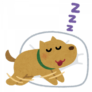 癒し!ニトリの○○で眠るワンちゃんが可愛すぎる!