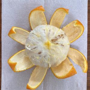 果物の厚皮剥くのに便利なムッキーちゃん