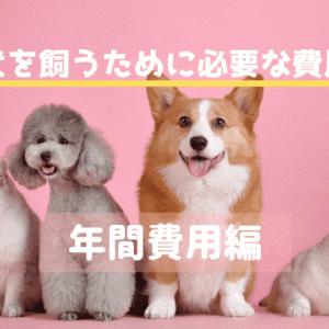 犬を飼うにはどのくらいの費用が必要?【年間費用編】