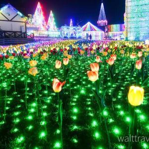 東京ドイツ村イルミネーション2020-2021の点灯時間と開催期間は?