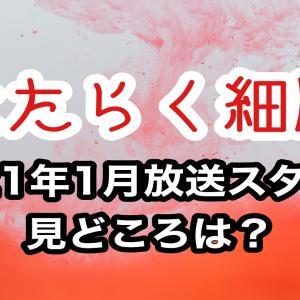 【アニメ】はたらく細胞第2期が2021年1月放送スタート!見どころは?