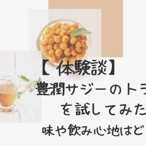 【体験談】豊潤サジーのトライアルを試してみたよ〜味や飲み心地は?