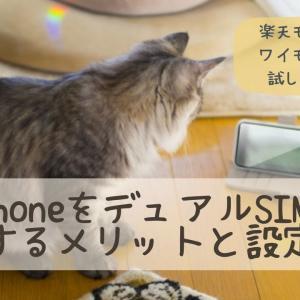 iPhoneをデュアルSIMで運用するメリットと設定方法〜ワイモバイルと楽天モバイル〜