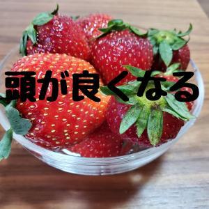 頭の良くなる食事(日本語教育能力検定試験対策)