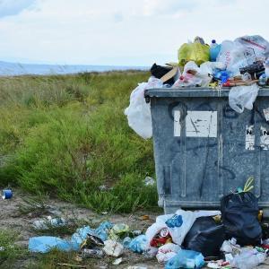 【市井紗耶香】須藤元気離党?繰り上げ当選の可能性 ネット「ゴミからゴミ」