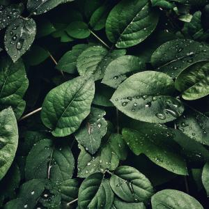 半永久的に使える除湿対策、臭い対策 クローゼット 衣類を守る