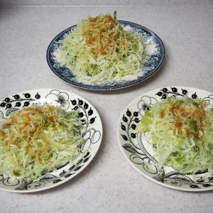 新しいお皿♪ お稲荷さんと長崎皿うどん