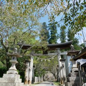 清(すが)神社の御神木に圧倒されました スタバの焼き栗モンブラン♡