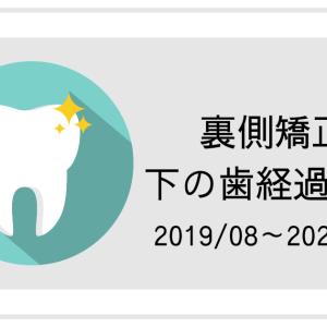 【裏側矯正】下の歯経過写真2019/08~2020/04