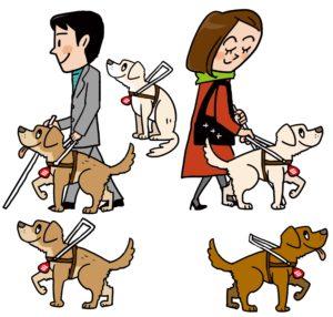 目の不自由な人と「白杖と盲導犬」~道路交通法第14条 (警察官じゃなくても)~