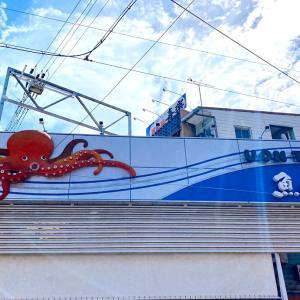 【おかいもの】明石魚の棚で新鮮なお魚を買う幸せ