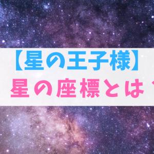 星の王子様の「星の座標」とは?意味や使い道を解説