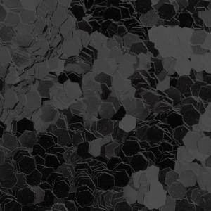 煌めくVANS「スリッポン」、限定のブラックスパンコールモデル