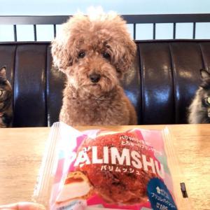 ローソンのコンビニスイーツ【パリムッシュ】を食べてみた