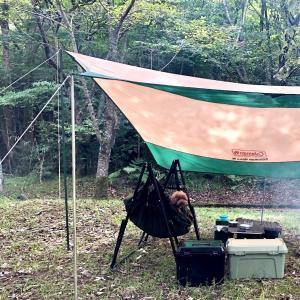 我が家の犬連れキャンプの必需品