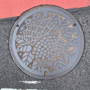 [マンホール] 愛知県日進市のマンホール