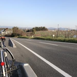 この時期の移動手段としてのオススメは自転車