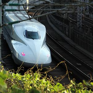 東海道新幹線、山陽新幹線で臨時「のぞみ」 7月後半の4連休に対応