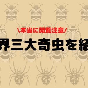 【閲覧注意!画像付き】世界三大奇虫とは何のこと?