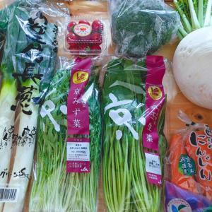 ポチ報告★11~20店舗目+カウント外 ちょっとだけ京野菜の話。