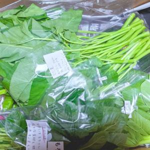 【ネタバレ】店長厳選 季節の野菜 セット 12種類*南房総アンテナショップ*お勧め品Pickup!