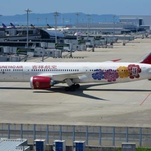吉祥航空のB787