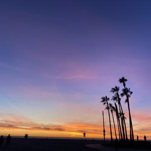 ロサンゼルス観光おすすめスポット5選