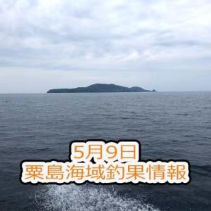 粟島海域釣果情報 5月9日キジハタ・ソイ・イナワラ・メバル・ホウボウ