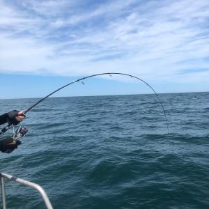 7月17日キャスティング釣果情報|新潟寝屋釣り船昭和丸