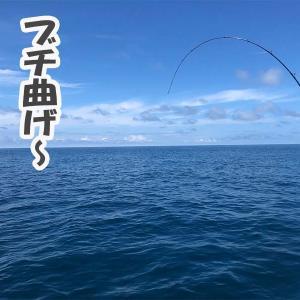 7月30日ライトジギング釣果情報|真鯛・キジハタ・イナワラ・ヒラメ