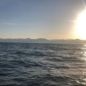 3月19日と20日タイジギングの乗船募集のご案内|新潟寝屋漁港の春の桜鯛船釣り