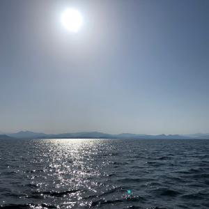 4月11日のタイジギング釣果情報と乗船募集のご案内